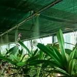 Bộ máy phun sương tưới phong lan tiêu chuẩn cho mọi quy mô diện tích!!
